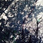 Schatten_Mondfinsternis_1