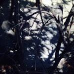 Schatten_Mondfinsternis_2