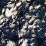 Schatten_Mondfinsternis_3